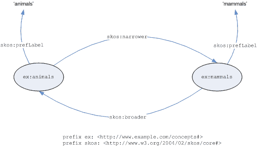 Graph of broader narrower example