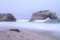 Natural Bridges (Santa Cruz, CA)