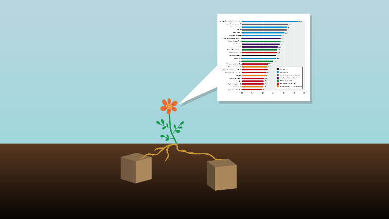 Flower with roots in data