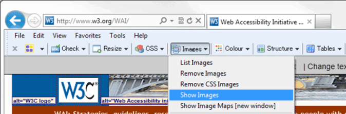 Web Accessibility Toolbar for IE