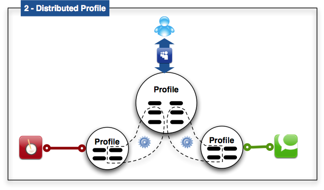 Distributed Profile