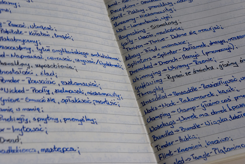 A page from a vocabulary (hand written) book. English words next to Polish equivalents