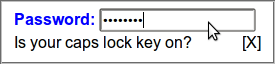 A password text entry form controls, with a tooltip below, reading 'Is your caps-lock key on?'