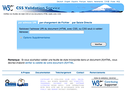Screenshot of the validator
