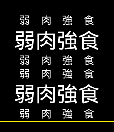 Timed Text Markup Language 2 (TTML2)