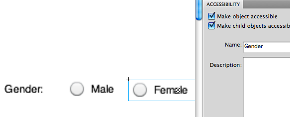 Using the Accessibility panel to add a group name to a form control