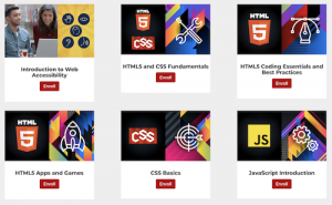 All 6 W3Cx courses: HTML5&CSS Fundamentals, HTML5 Coding Essentials and Best Practices, HTML5 Apps and Games, CSS Basics, JavaScript Introduction and Introduction to Web Accessibility