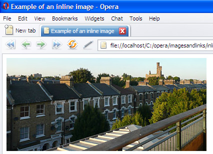 the image displayed in a browser